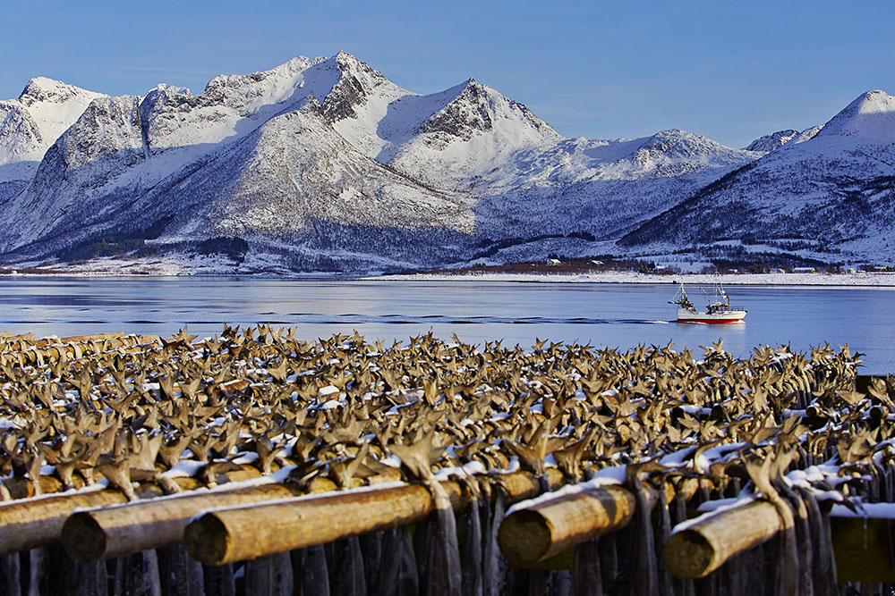 Norway: Lofoten, Vagan