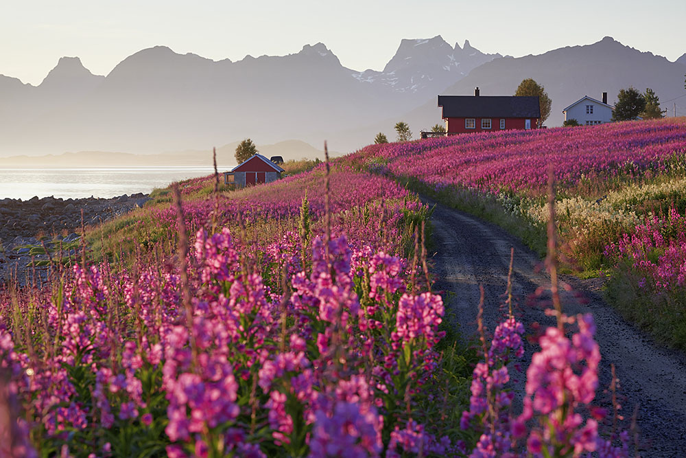 Norway: Vesteralen